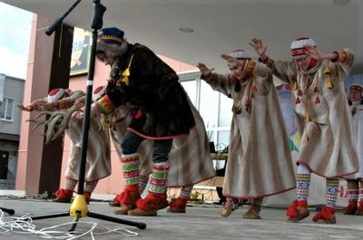 Эксперты разработают программу поддержки коренных народов в Арктической зоне