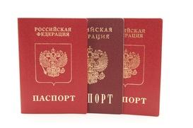 Госдума приняла в первом чтении законопроект об упрощении получения российского гражданства