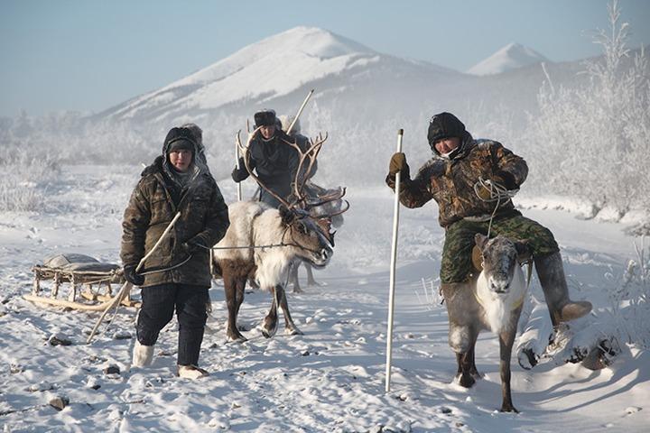 Всемирный конгресс оленеводов начал работу в саамском селе Швеции