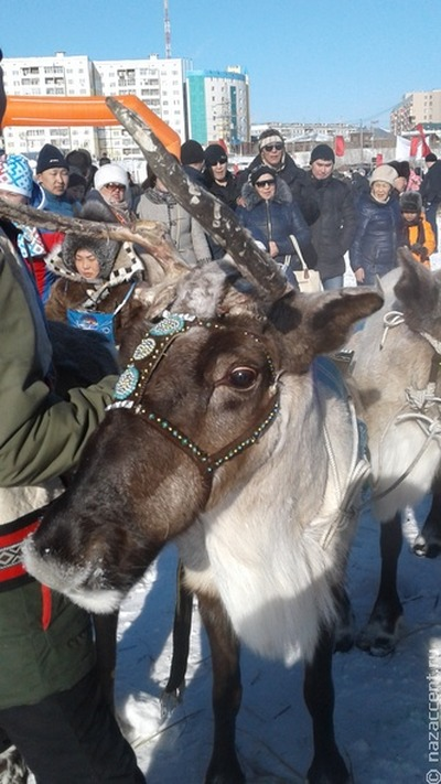 В Забайкалье предложили привлекать оленеводов к тушению труднодоступных пожаров