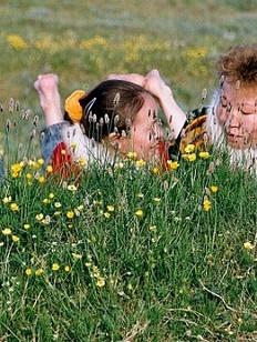 День середины лета отмечают коренные народы Ямала