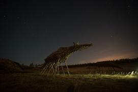 Священный табун мифических лошадей появился в Якутии