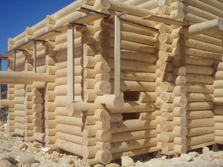 Тувинцам-тоджинцам древесину для строительства выделят бесплатно