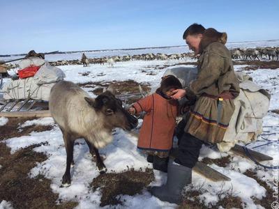 В России появились учебники по ОБЖ для детей кочевников
