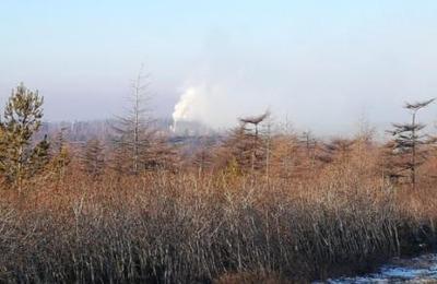 Сахалинские уйльта пожаловались на смог от сжигания нефтеотходов