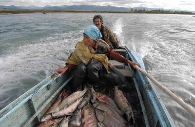 Аборигены Чукотки смогут ловить рыбу почти без ограничений