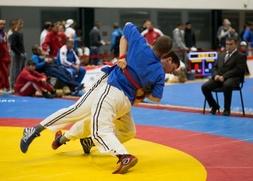 Фестиваль национальных видов спорта стран СНГ впервые состоится в Ульяновске
