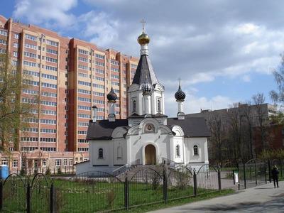Жители Домодедова объявили о создании русской республики