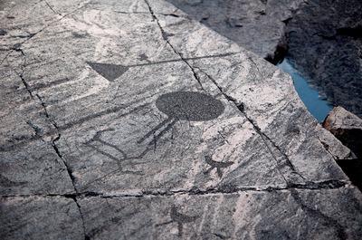На петроглифы Карелии потратят 630 млн из федерального бюджета