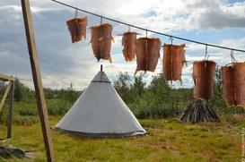 """Традиционные северные деликатесы представят на фестивале """"Север"""" в Норильске"""