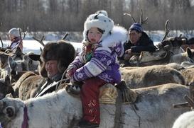 В Иркутской области приняли закон о выделении земли коренным малочисленным народам