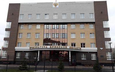 Студент из Брянска получил условный срок за разжигание межнациональной розни в интернете