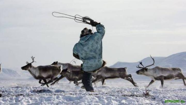 В Иркутской области отпразднуют День оленевода-охотника