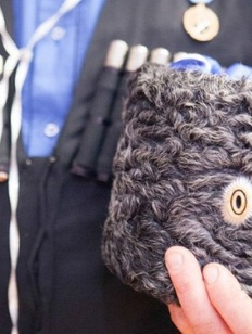 Фестиваль традиционной казачьей культуры пройдет на Ставрополье
