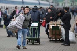 Московский чиновник: Власти добились хороших результатов в борьбе с нелегалами