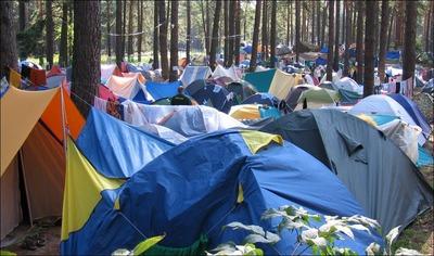 В Марий Эл проведут этнокультурный лагерь для финно-угорской молодежи