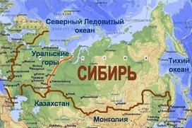 Жителя Иркутской области, призывавшего к отделению Сибири, признали невменяемым