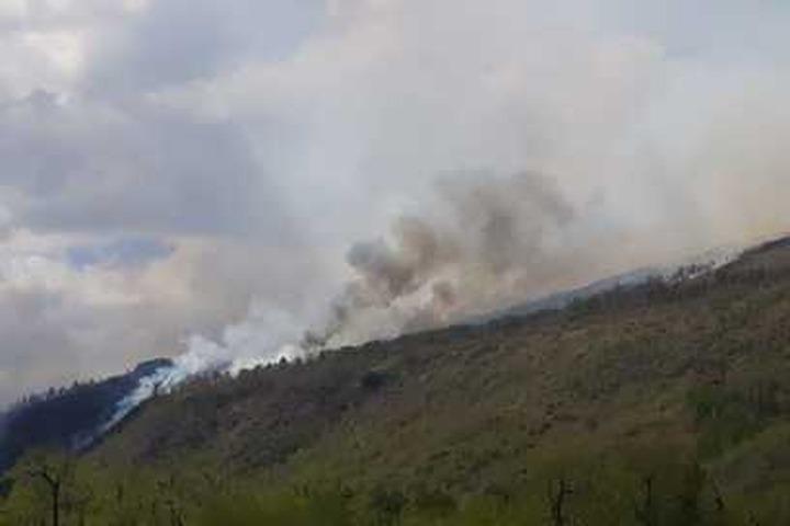 Лесные пожары на Камчатке не угрожают жителям национальных сел