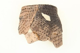 В Югре ученые восстановят историю городища, связанного с хантами и ненцами