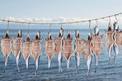 Эвенки Байкала пожаловались на запрет ловли омуля