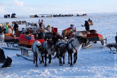 Пострадавшим от гололеда семьям оленеводов на Ямале окажут материальную помощь