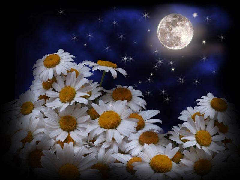 Как пожелать спокойной ночи на языках народов России