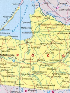 В Калининграде русские националисты собирают новое областное правительство