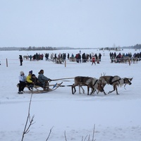 День оленевода в Русскинской