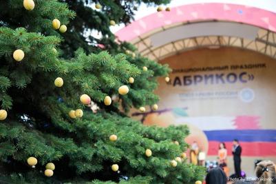 """Абрикосовую елку поставили на празднике """"Абрикос"""" в Москве"""
