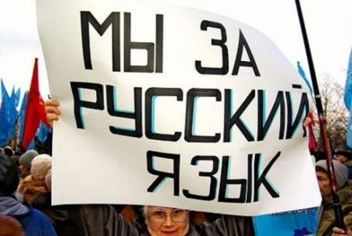 Закон о родном русском языке рассмотрят в Госдуме осенью