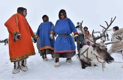 Караул, Носок, Потапово и Попигай отпразднуют День оленевода