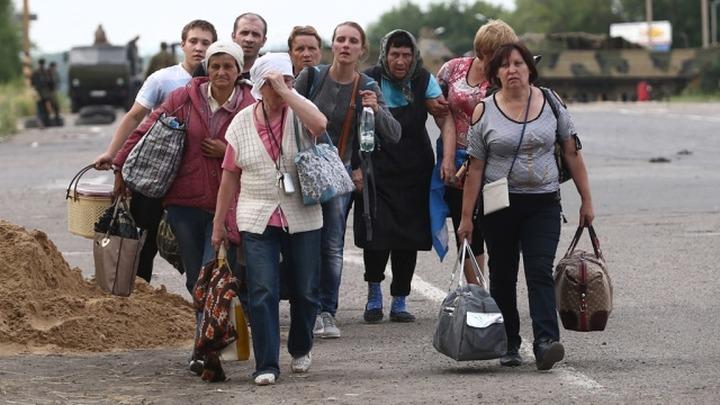 Украинские беженцы смогут получить убежище в РФ по упрощенной системе