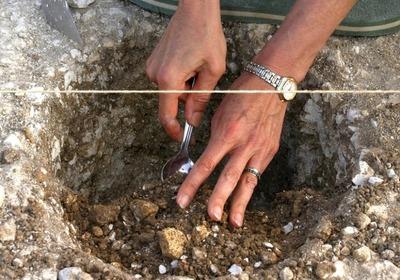 Новгородские археологи раскопали древнейшую русскую вилку