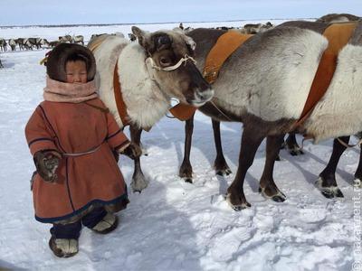 Выставка о древнем Ямале открылась на железнодорожном вокзале Лабытнанги
