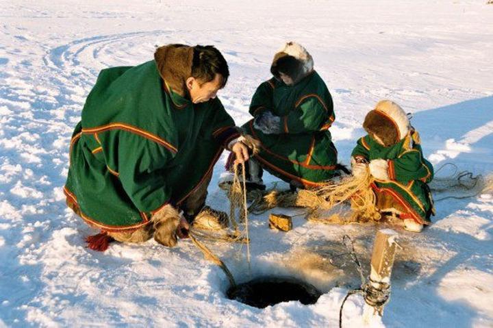 На Таймыре в 2015 году выберут лучшую династию оленеводов и рыбаков