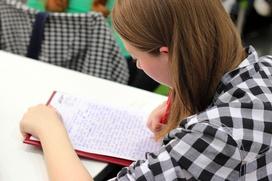 Более 100 тысяч человек из 25 стран мира напишут диктант на татарском языке
