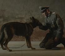 Российский фильм о Холокосте глазами собаки покажут на Берлинском кинофестивале