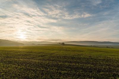 Эксперты РАНХиГС призвали допустить мигрантов к летней полевой работе