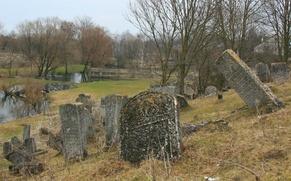 Активисты Астрахани попросили помощи в восстановлении еврейского кладбища