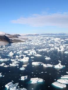 WWF поможет коренным народам российской Арктики приспособиться к изменению климата