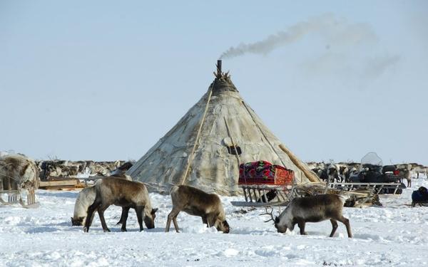На юридическую помощь коренным народам Севера выдали более 8 млн рублей