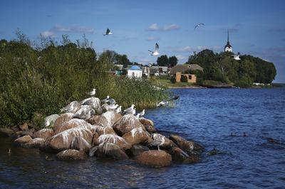 Талабские острова в Псковской области