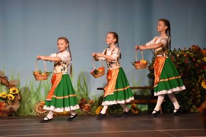 Праздник урожая Erntedankfest отметят российские немцы в Новосибирске