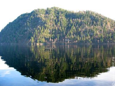Тубалары помогут охранять леса Горного Алтая