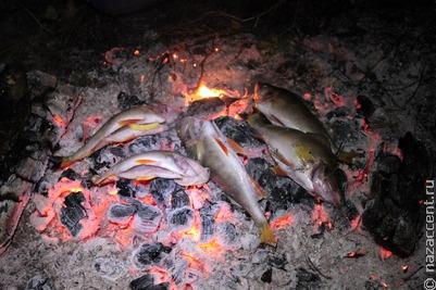 Национальная кухня: десерт из борщевика и калачи на рыбном жире