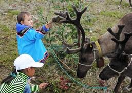 Эвенкийские и уйльтинские оленеводы отметили на Сахалине Курэй