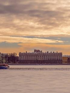 Полиция Санкт-Петербурга начала массовые проверки мигрантов после драки