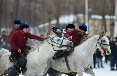 Прокуратура проверит информацию о жестоком обращении с лошадьми во время народной игры кок-бору