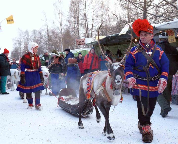 В Мурманской области проведут День оленевода