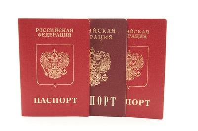 За хорошее знание русского языка и готовность переехать в Россию будут давать российское гражданство